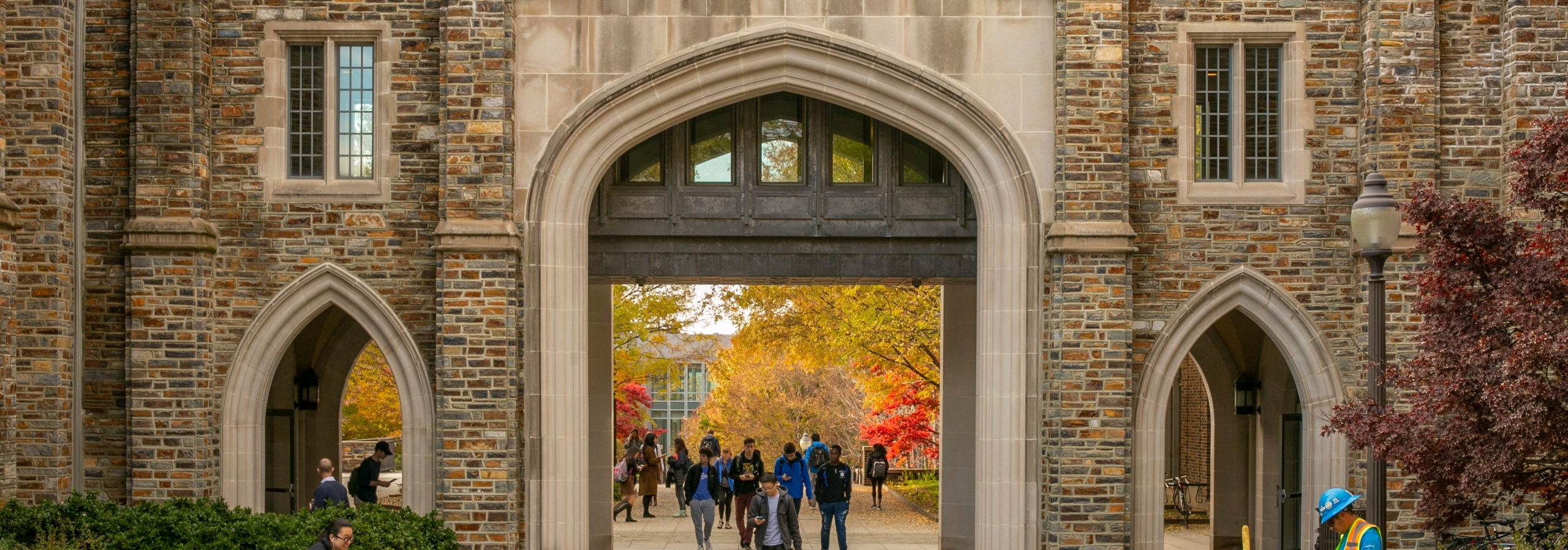 Autumn on Duke's campus